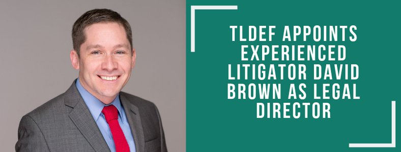 TLDEF Appoints Experienced Litigator David Brown as Legal Director